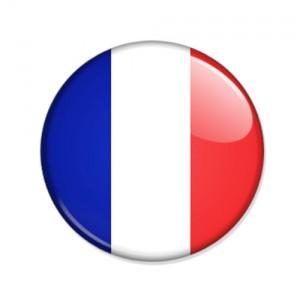 Logo drapeau france